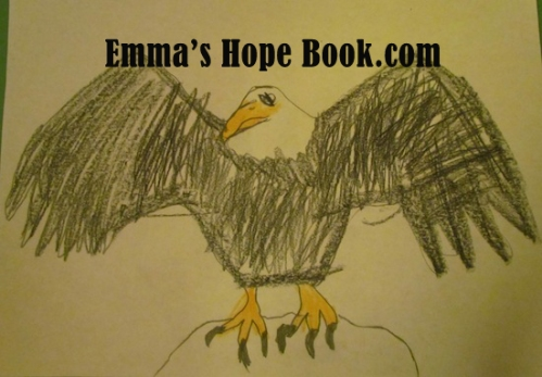 Emma's Eagle ~ January 29th, 2014